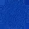 3-Pisa-kornblume